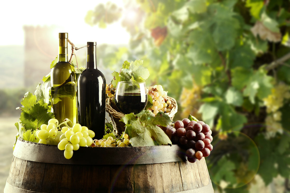 Difference Between Organic And Natural Wine